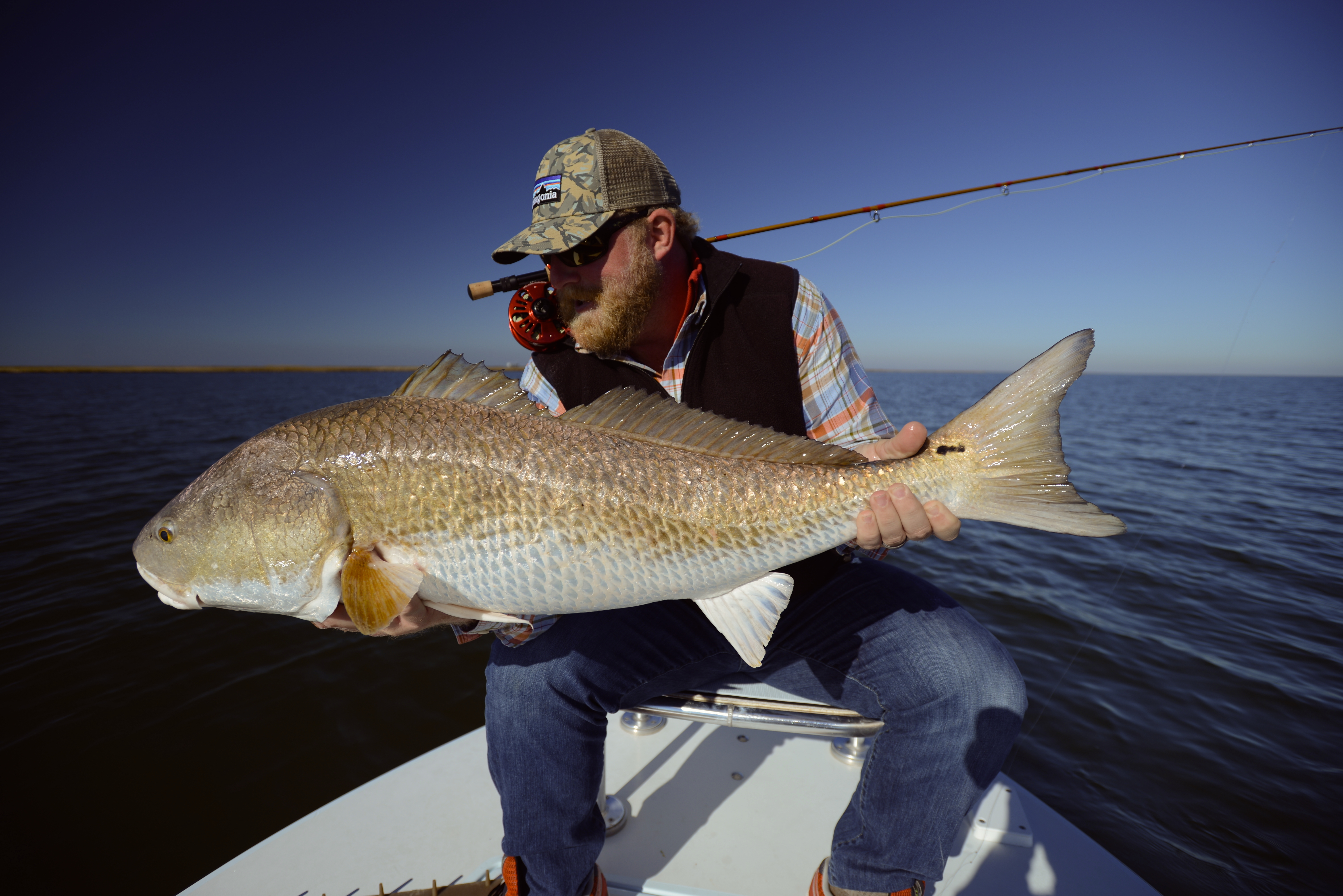 Louisiana redfish on fly slow low coastal outfitters for Louisiana redfish fly fishing