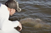 Winter Fly Fishing Charter | New Orleans, LA | Slow & Low Coastal Outfitters