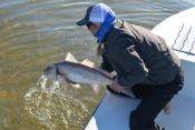30A INSHORE FISHING