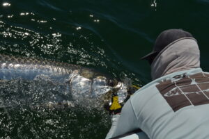 30A TARPON FISHING